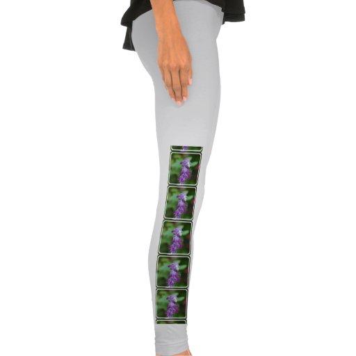 Salvia Legging