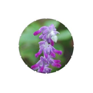 Salvia Candy Tins