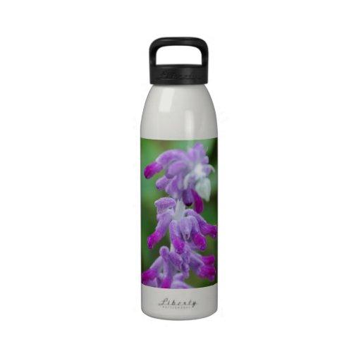 Salvia Drinking Bottles