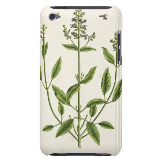 Salviam from 'A Curious Herbal', 1782 (colour engr Barely There iPod Case