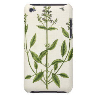 Salviam from 'A Curious Herbal', 1782 (colour engr iPod Case-Mate Cases