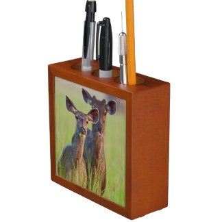 Sambar Deers in the meadows, Corbett National Park Desk Organiser