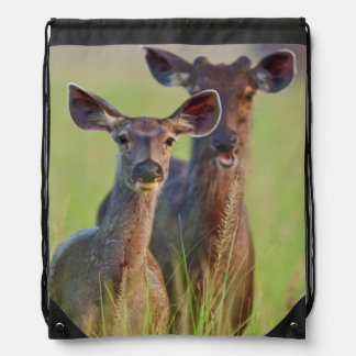 Sambar Deers in the meadows, Corbett National Park Drawstring Bag