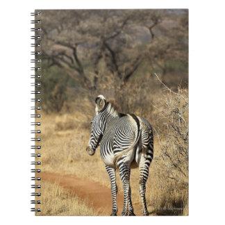 Samburu National Reserve, Kenya Notebook