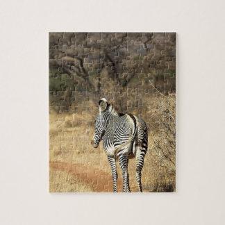 Samburu National Reserve, Kenya Puzzle