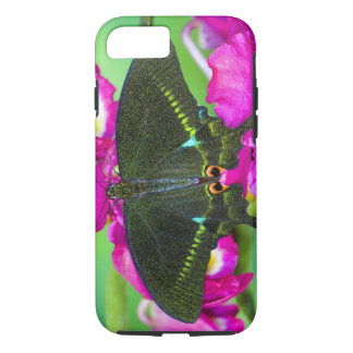 Sammamish, borboleta tropical de Washington iPhone 8/7 Case