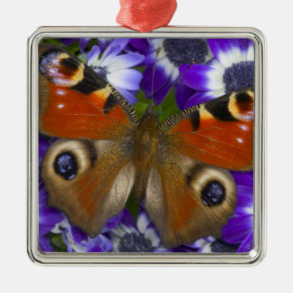 Sammamish Washington Photograph of Butterfly 10 Christmas Ornament