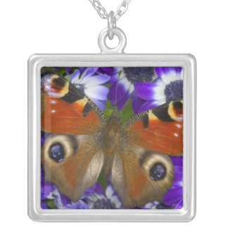 Sammamish Washington Photograph of Butterfly 10 Silver Plated Necklace