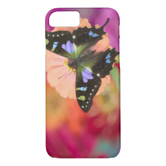 Sammamish Washington Photograph of Butterfly 11 iPhone 8/7 Case