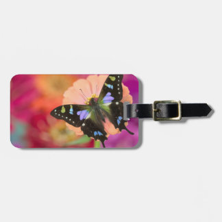 Sammamish Washington Photograph of Butterfly 11 Luggage Tag
