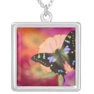 Sammamish Washington Photograph of Butterfly 11 Silver Plated Necklace