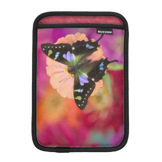 Sammamish Washington Photograph of Butterfly 11 Sleeve For iPad Mini