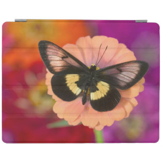 Sammamish Washington Photograph of Butterfly 12 iPad Cover