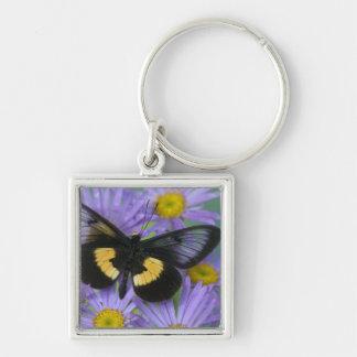 Sammamish Washington Photograph of Butterfly 13 Key Ring