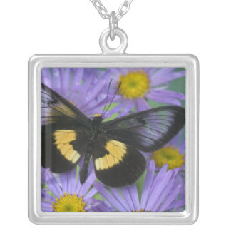 Sammamish Washington Photograph of Butterfly 13 Silver Plated Necklace
