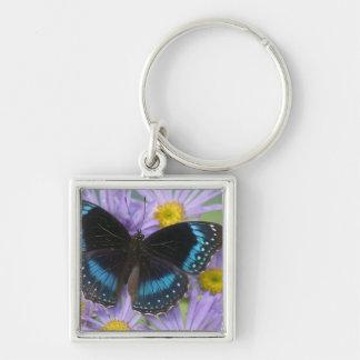 Sammamish Washington Photograph of Butterfly 14 Key Ring