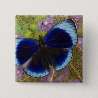 Sammamish Washington Photograph of Butterfly 15 Cm Square Badge