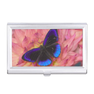 Sammamish Washington Photograph of Butterfly 18 Business Card Holder