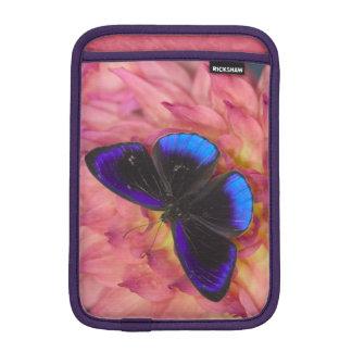 Sammamish Washington Photograph of Butterfly 18 iPad Mini Sleeve
