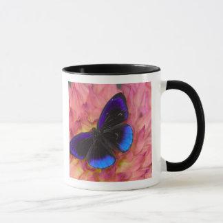 Sammamish Washington Photograph of Butterfly 18 Mug