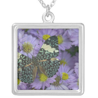 Sammamish Washington Photograph of Butterfly 19 Silver Plated Necklace