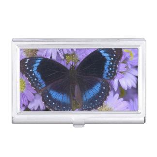 Sammamish Washington Photograph of Butterfly 20 Business Card Holder