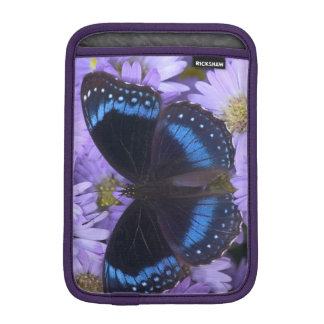 Sammamish Washington Photograph of Butterfly 20 iPad Mini Sleeve