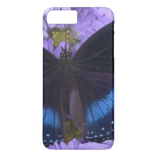 Sammamish Washington Photograph of Butterfly 20 iPhone 8 Plus/7 Plus Case