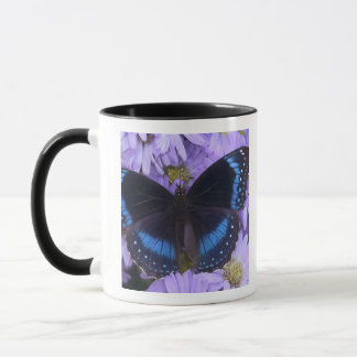 Sammamish Washington Photograph of Butterfly 20 Mug