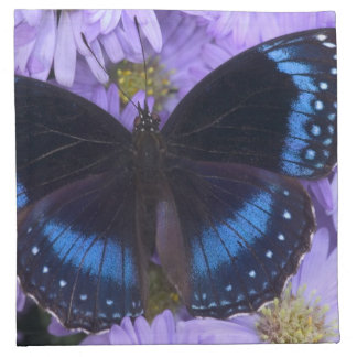 Sammamish Washington Photograph of Butterfly 20 Napkin