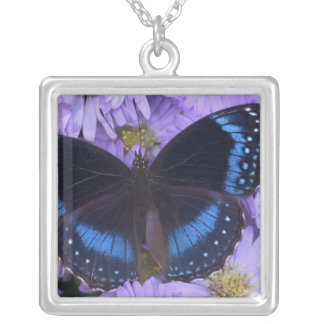 Sammamish Washington Photograph of Butterfly 20 Silver Plated Necklace