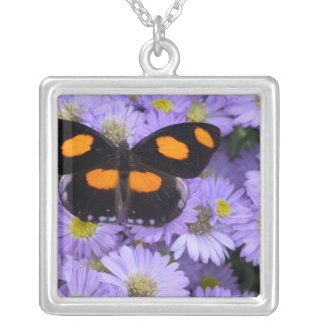 Sammamish Washington Photograph of Butterfly 21 Silver Plated Necklace