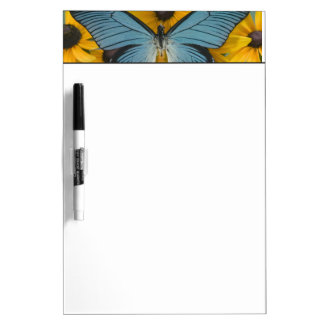 Sammamish Washington Photograph of Butterfly 22 Dry Erase Board