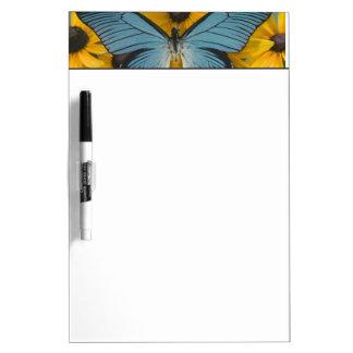 Sammamish Washington Photograph of Butterfly 22 Dry Erase Whiteboards