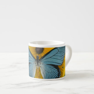 Sammamish Washington Photograph of Butterfly 22 Espresso Cup