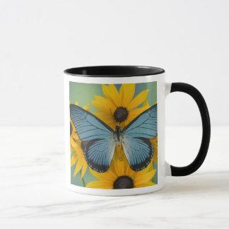 Sammamish Washington Photograph of Butterfly 22 Mug