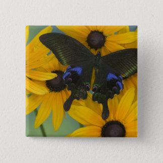 Sammamish Washington Photograph of Butterfly 23 15 Cm Square Badge