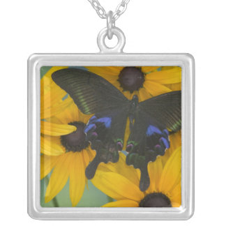 Sammamish Washington Photograph of Butterfly 23 Silver Plated Necklace
