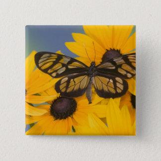 Sammamish Washington Photograph of Butterfly 24 15 Cm Square Badge