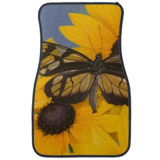 Sammamish Washington Photograph of Butterfly 24 Car Mat