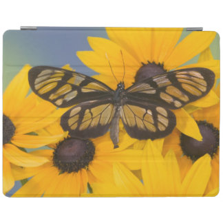 Sammamish Washington Photograph of Butterfly 24 iPad Cover