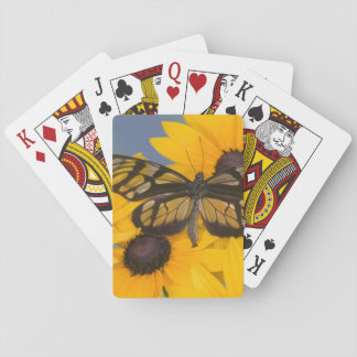 Sammamish Washington Photograph of Butterfly 24 Playing Cards