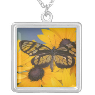 Sammamish Washington Photograph of Butterfly 24 Silver Plated Necklace