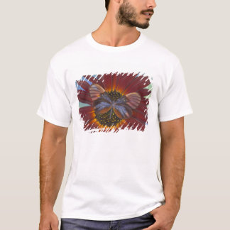 Sammamish Washington Photograph of Butterfly 25 T-Shirt