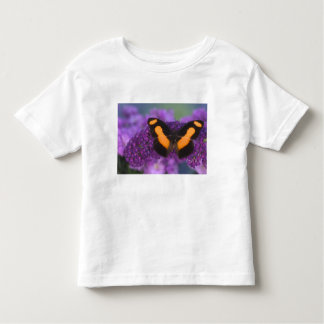 Sammamish Washington Photograph of Butterfly 28 Toddler T-Shirt