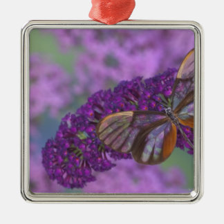 Sammamish Washington Photograph of Butterfly 29 Christmas Ornament