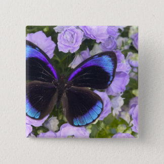 Sammamish Washington Photograph of Butterfly 2 15 Cm Square Badge