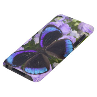 Sammamish Washington Photograph of Butterfly 2 Barely There iPod Case