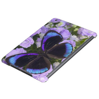 Sammamish Washington Photograph of Butterfly 2 iPad Air Case