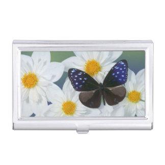 Sammamish Washington Photograph of Butterfly 33 Business Card Holder